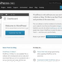 Making Self-hosted WordPress Websites SEO-Friendly