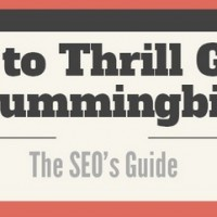 The SEO's Guide to Google Hummingbird [Search Engine Journal]
